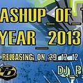 Smashup_Of_The_Year_2013 DJ_P_L_G