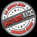 04 - Blazin Wit The Bros (feat The Game) (ShadyBeer Radio)