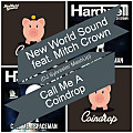 New World Sound ft. Mitch Crown - Call Me A Coindrop (DJ Sylvester MashUp)