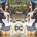 Reggaeton Mix Tracks Evolutions - Dj Cristofer