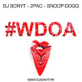 Dj Sonyt x 2Pac x Snoop Dogg - Wanted Dead Or Alive (Dj Sonyt Remix)