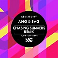 Tiësto ft. ANG & SAG x Danny Q Parker & Dycos - Chasing Summers (Daan Oliver & RYB3R Edit)