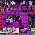 Snoop Dogg Aint No Fun (Chopped&Screwed By your Worlds Truly DJ Spankk)