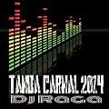 Tanda Carnal 2014 Mix by DJRAGA