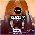 Zedd Vs. Martin Garrix & Nirvana - The Night Smell Like a Teen Animal  (Maxtel Garcia Mashup)