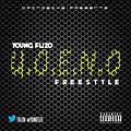 Young Flizo - UOENO [Freestyle]