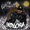 17 - The Underachievers - Play Your Part