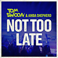 Tom Swoon & Amba Shepherd - Not Too Late (Bassnectar & PatrickReza Remix)