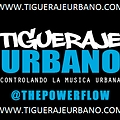 Prince Royce Ft Mr Black La Fama - Angelito (Official Remix) (Prod. By Mc Pauta) (www.TiguerajeUrbano.com)
