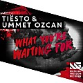Tiesto_And_Ummet_Ozcan_-_What_Youre_Waiting_For 2016