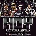 Hoy Official Remix (Viko Nation)