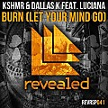 KSHMR & DallasK feat. Luciana - Burn (Let Your Mind Go) (Extended Mix)