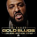 DJ Khaled ft Chris Brown, August Alsina & Fetty Wap - Gold Slugs