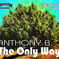 Anthony B - The Only Way - Sunglasses Riddim