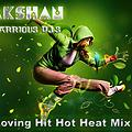 2013 Loving Hit Hot Heat Mix Part 1 Dj Lakshan South WaRRious Dj's