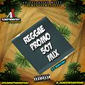 Reggae Promo507 Vol.1 - DJ james507