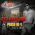 VYBZ KARTEL - CYA TEST WE - PHASE ONE RIDDIM - HAAD ROKK MUZIK - 2014