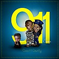 911 (911 Cover)