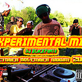 Experimental mix dj BP riddim2012
