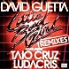 David Guetta feat Taio Cruz & Ludacris - Little Bad Girl (Norman Doray Remix).mp3
