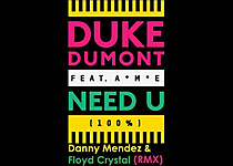Duke Dumont ft. A-M-E - Need U 100% (Floyd Crystal & Danny Mendez YouTube)